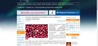 В лесах Архангельской области могут появиться ягодные плантации