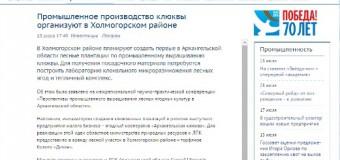 Промышленное производство клюквы организуют в Холмогорском районе