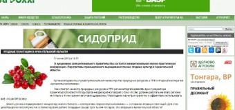 Ягодные плантации в Архангельской области