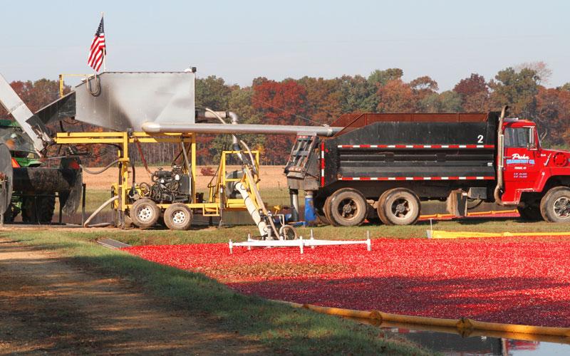 buyers-growers-main-harvest-3