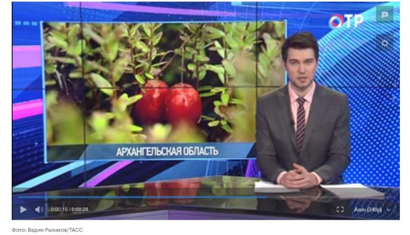 Новости вяземский хабаровского