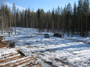 Строительство плантации 2017.03.12 (15)