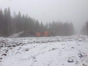 Строительство плантации 2017.03.12 (2)