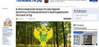 В Ярославской области обсудили вопросы промышленного выращивания лесных ягод
