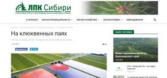 """Статья в журнале """"ЛПК Сибири"""""""