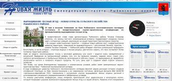 Выращивание лесных ягод – новая отрасль сельского хозяйства Рыбинского района