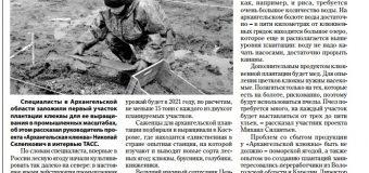 "Газета ""Карелия"""