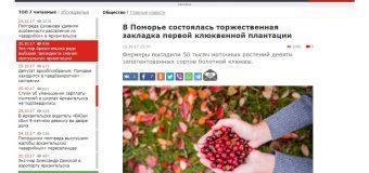 """ИА Архангельской области """"News29.ru"""""""
