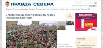 """Новостной портал """"Правда Севера"""""""